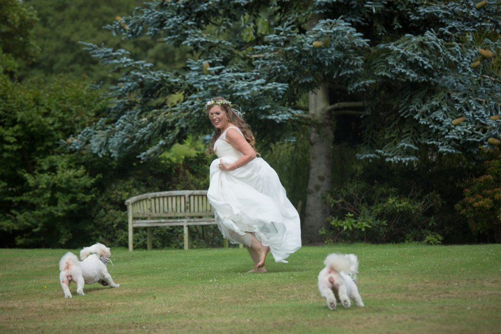 bride running round with dogs