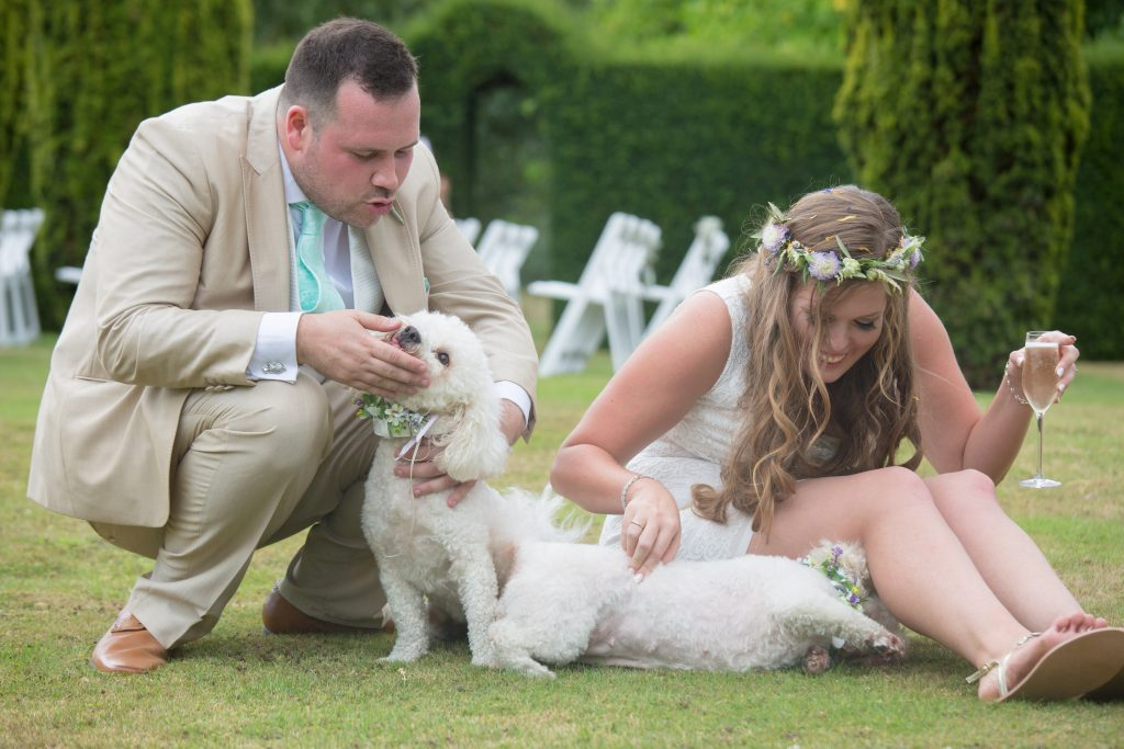 newly wed couple with their dogs on wedding day