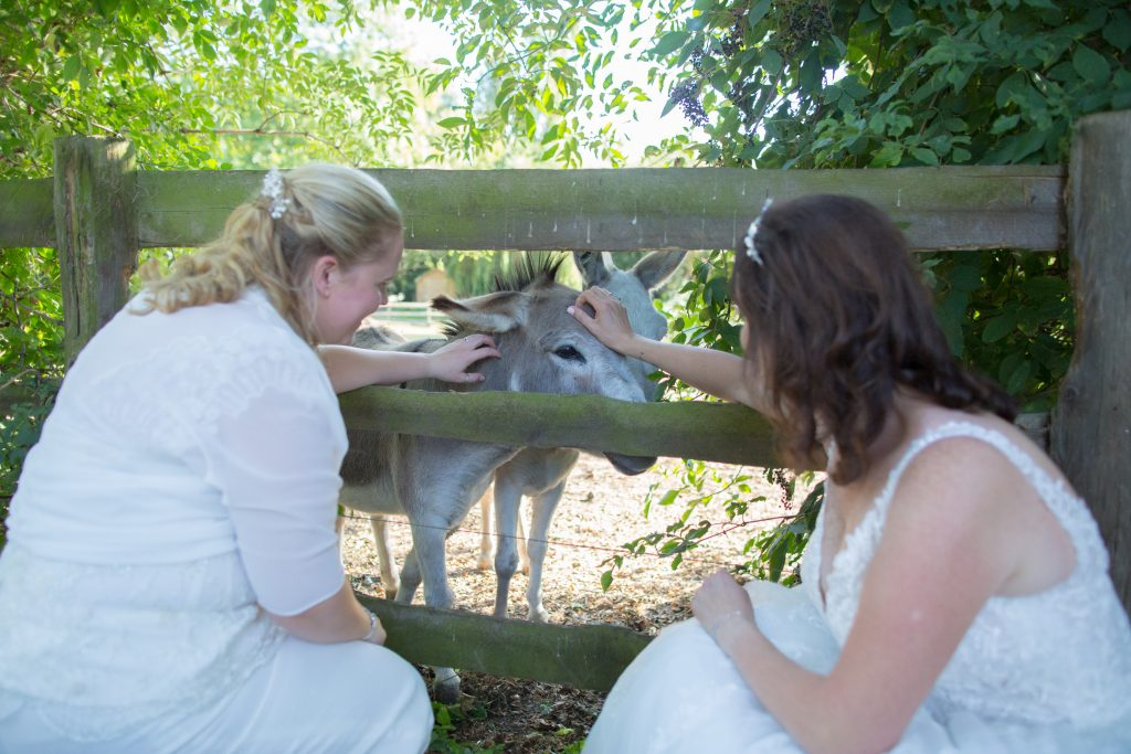 two brides petting a donkey